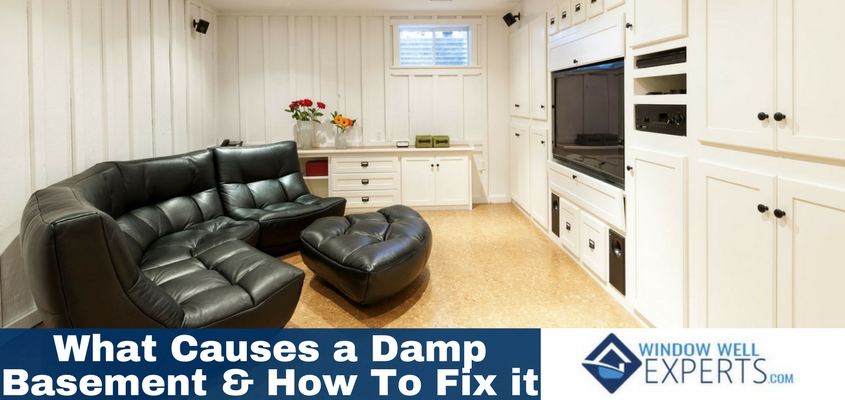 What Causes A Damp Basement And How To Fix It