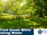 5 Ways To Keep Your Yard Green While Saving Water