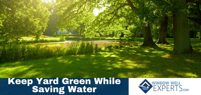 Five Ways To Keep Your Yard Green While Saving Water