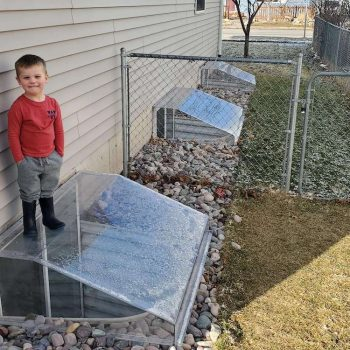 Three atrium-dome covers in a backyard. A child is standing on the front-most cover.