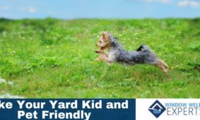 How to Make your Yard Kid and Pet Friendly