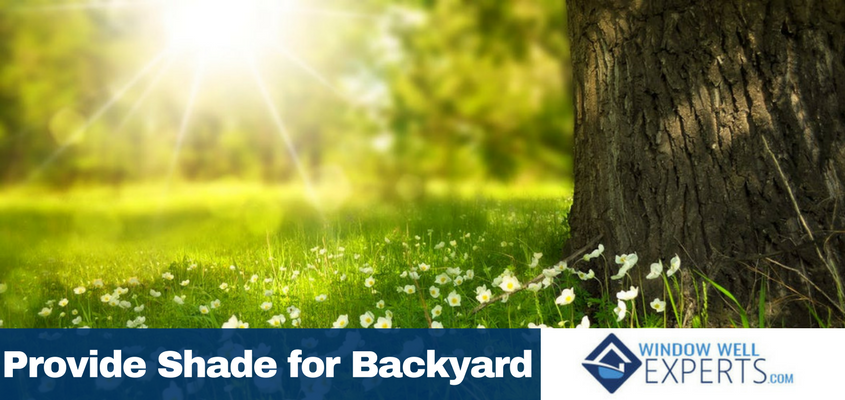 How to Provide Shade to You Backyard